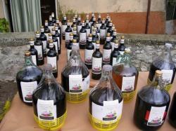 Esposizione dei vini novelli offerti dai produttori locali