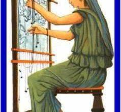 BIBLIOTECA – TEMATICHE AL FEMMINILE